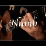 Linkin Park – Numb fingerstyle tabs (Kelly Valleau)