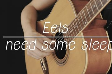 Eels – I Need Some Sleep fingerstyle tabs (Nikita Lukyanov)